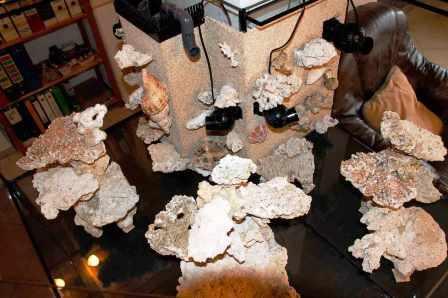 aquarium_rueckwand_meerwasseraquarium_diy_led-lampe_rueckwand_riffsaeule_erfahrungsbericht9