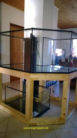 aquarium_steht2_meerwasseraquarium_diy_led-lampe_rueckwand_riffsaeule_erfahrungsbericht