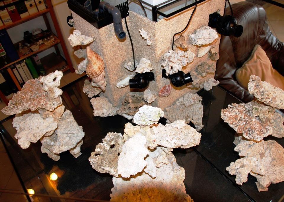meerwasseraquarium_diy_led-lampe_rueckwand_riffsaeule_erfahrungsbericht