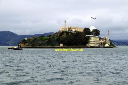 san_francisco_alcatraz2_kreuzfahrt_suedpazifik_radiance_of_the_seas_reisebericht