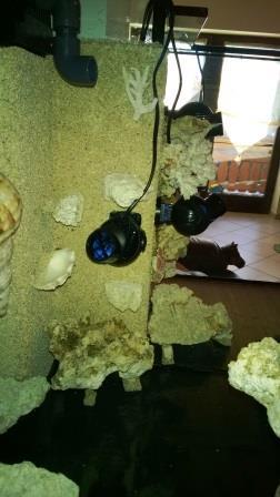 stroemungstechnik_meerwasseraquarium_diy_led-lampe_rueckwand_riffsaeule_erfahrungsbericht4
